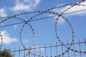 Coiled Razor Sharp Barbed Wire Against Blue Sky 2