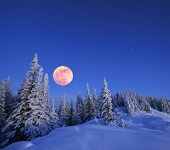 Winter landscape in the mountains at night. A full moon and a starry sky. Carpathians, Ukraine