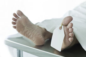 stock photo of autopsy  - Photo of dead person covered with a sheet on a gurney feet toward camera with blank tag on the big toe. Feet are smooth and clean; body is a model. ** Note: Shallow depth of field - JPG