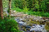 image of ural mountains  - Stormy mountain river Zhigalan on the ridge Kvarkush on the north of the Ural Mountains on the background of green vegetation - JPG