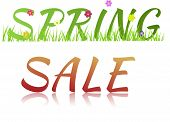Inscription Spring Sale With Flowers,grass And Glass Effect