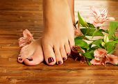 image of human toe  - Closeup photo of a female feet at spa salon on pedicure procedure  - JPG