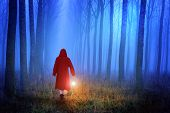 stock photo of little red riding hood  - Little Red Riding Hood in the forest - JPG