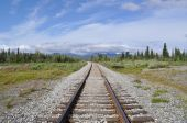 picture of denali national park  - This is major railroad near Denali National Park in Alaska - JPG