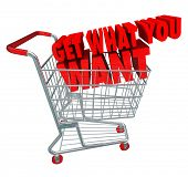 Get What You Want Shopping Cart Buy Purchase Desired Items
