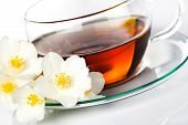 image of jasmine  - Jasmine tea with jasmine herb flower on white background - JPG