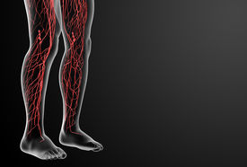 image of nod  - 3d render lymphatic system leg side view - JPG