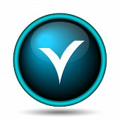 V Checked Icon