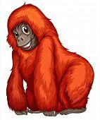 Illustration of a single orangutan