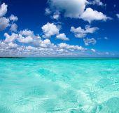 beautiful blue caribbean sea water