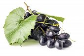 Bunch Of Grapes With Leaves Isolated On White Background