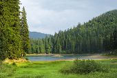 Sinevir Lake In The Carpathian Mountains