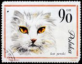 Post Stamp From Poland