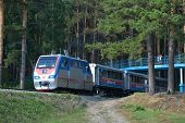 NOVOSIBIRSK, RUSSIA - AUGUST 20, 2014: Train on the route trough the pine forest on the Childrens ra
