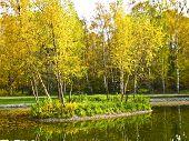 Autumn Landscape, Island