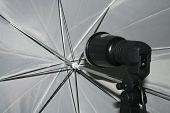 Studio Umbrella #1