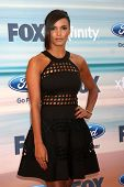 LOS ANGELES - SEP 8:  Jessica Lucas at the 2014 FOX Fall Eco-Casino at The Bungalow on September 8,