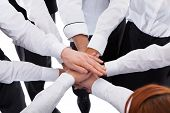 stock photo of waiter  - Waiters and waitresses stacking hands - JPG