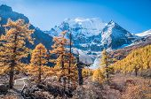 Colorful Autumn forest and mountain