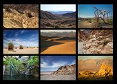 Collage showing different place to see in Death Valley, United States