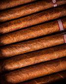 image of cigar  - Close up of cigars in open humidor box - JPG