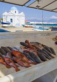 Marble Counter With Fresh Fish Near The Sea With Boats And The Famous Church On The Island Of Mykono