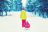 Mother Sledding Child In The Winter Snowy Forest