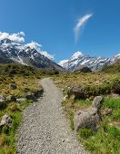 Walking Track in Mount Cook National Park