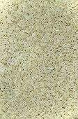 Rice, Detail, vertical