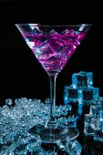 Violet Coctail With Ice  Cubes
