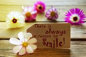 Sunny Label Life Quote There Is Always A Reason To Smile With Cosmea Blossoms