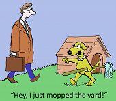 I Mopped The Yard