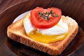 Toast With Poached Egg And Tomato