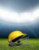 Cricket Stadium And Helmet