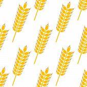 Ripe golden wheat in a seamless pattern
