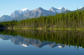 image of ecosystem  - Mountain and forest Reflection in Mirror Lake - JPG