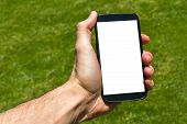 picture of dial pad  - Young male hand holding and showing smart phone with blank white screen on green background filled grass - JPG