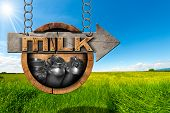 stock photo of milk  - Wooden sign with directional arrow with text Milk and steel cans for the transport of milk - JPG