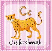 picture of cheetah  - Flashcard letter C is for cheetah - JPG