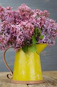 picture of pitcher  - Fresh lilac flowers in the yellow metal pitcher on the aged wooden table against blue background - JPG