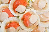 pic of korean  - Fresh scallops in the wings for cooking - JPG