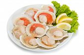 stock photo of korean  - Fresh scallops in the wings for cooking in plate - JPG
