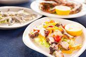 picture of octopus  - Italian cuisine - JPG