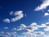 Daytime Cumulus