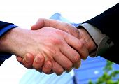 Business Men Handshake