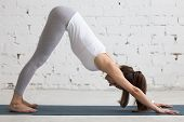 Постер, плакат: Yoga Indoors: Downward Facing Dog Pose