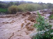 stock photo of mudslide  - Flooded stream during heavy rains - JPG