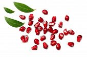 Pomegranate Seeds Isolated On White Background. Top View. Pomegranate Berries. poster