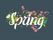 Spring Vector Text Lettering Background With Text Letter Ornament Beautiful Calligraphy Flower Hello poster