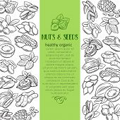 Page Decoration Template With Hand Drawn Nuts And Seeds. Cola Nut, Pumpkin Seed, Peanut And Sunflowe poster